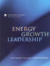 Energy for a New Generation - 2006 Northeast Utilities